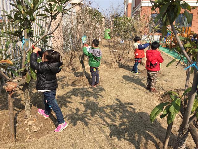 """以珍爱绿色,爱我家园"""" 为主题,通过给小树浇水,施肥,松土和认养"""