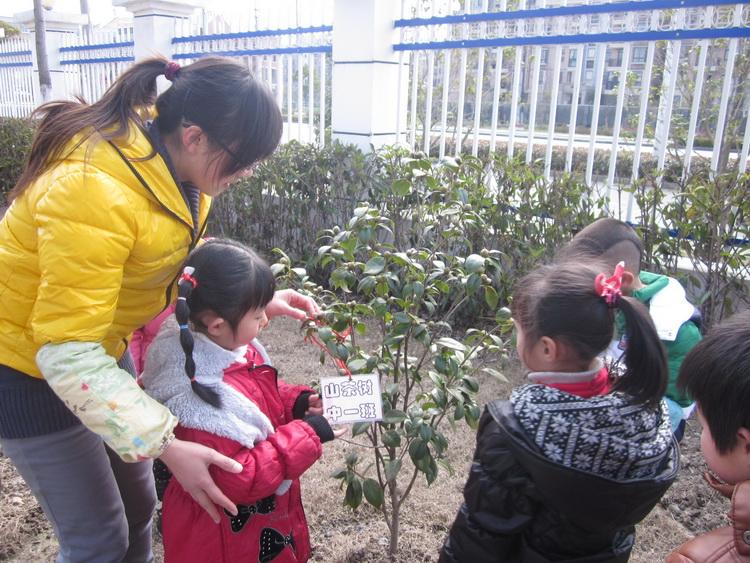 2011学年度学府幼儿园植树节活动报道