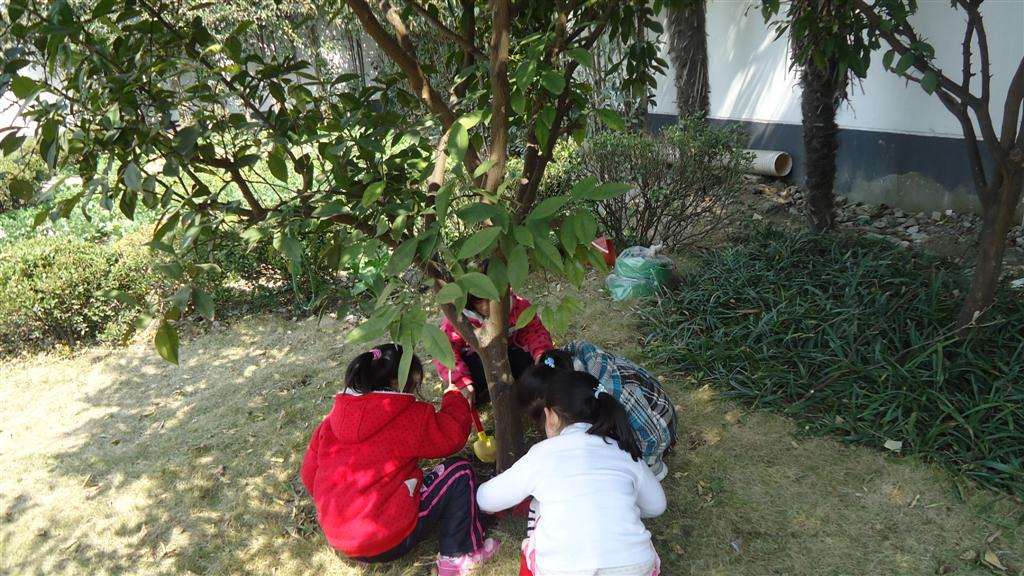 三原色幼儿园植树节活动