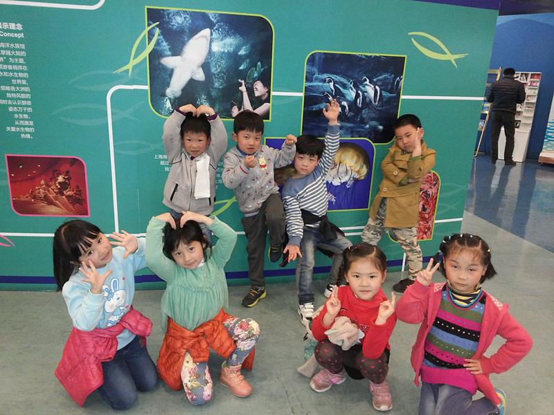"""其中,海洋水族馆是孩子们最期待的,水族馆里各种稀奇古怪、形象可爱的""""水中小精灵""""激发了孩子们的好奇心。小朋友们不仅看到了电视中常见的水母、鲨鱼、企鹅、海马,还见到了许多从来没有看到过的鱼类。每走一处,老师们总是指着鱼类铭牌向孩子作着介绍,或者是在展示缸前拍摄幼儿和鱼儿们的合影。在长长的海底走廊中,小朋友们仿佛置身于海底世界,被鱼儿和海底生物围绕,看着鱼儿从身边游过,孩子们快乐的笑声传遍整个海底世界。"""