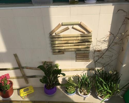 """泖港镇中心幼儿园 陈鹤琴先生指出:""""幼稚园需布置一个科学环境"""