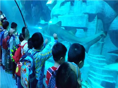 探索海底世界 乐游长风公园