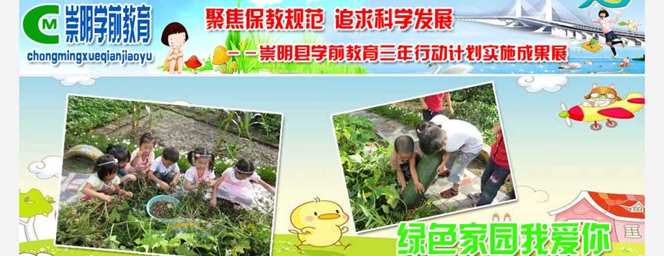 崇明县:聚焦保教规范 追求科学发展