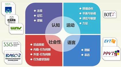 更科学的幼儿园个别化学习(2) - 上海学前教育网