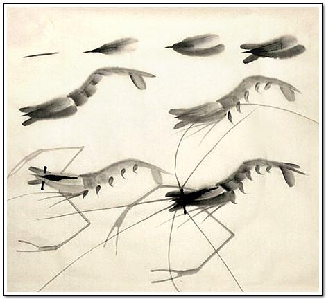 画虾步骤图