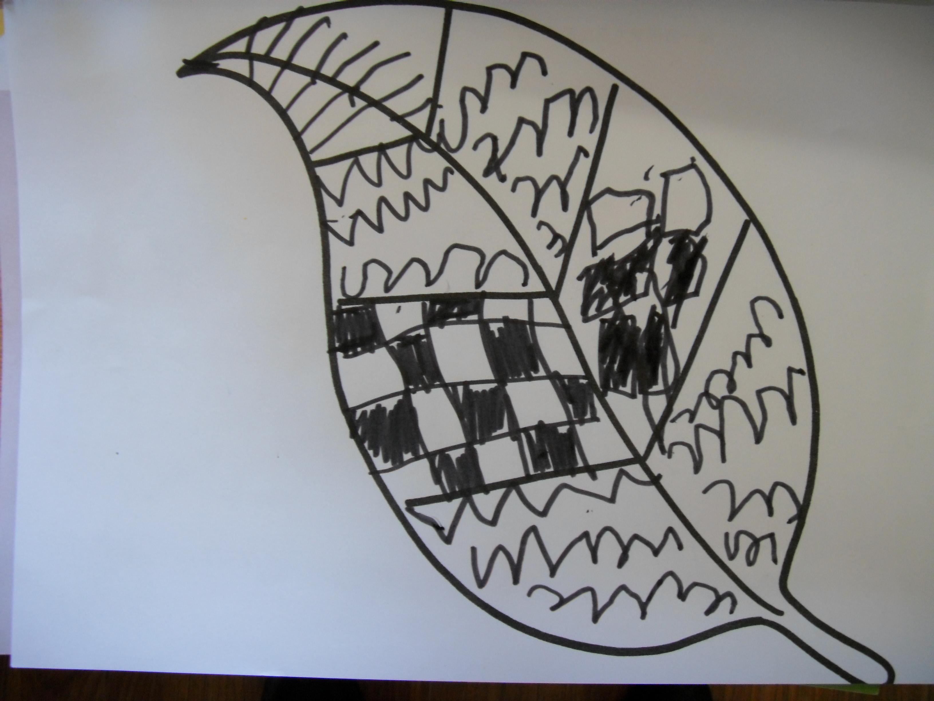 纸盘线描画树叶分享展示