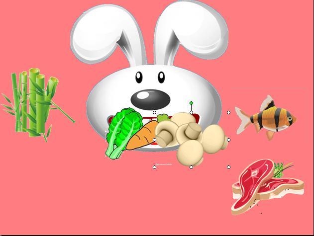 科常:可爱的小兔子