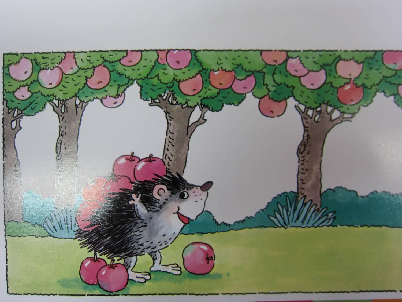 刺猬苹果树儿童画分享展示图片