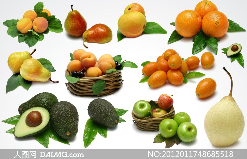 秋天是水果丰收的季节,甜甜的苹果,酸酸的桔子,饱含水分的梨都是这个