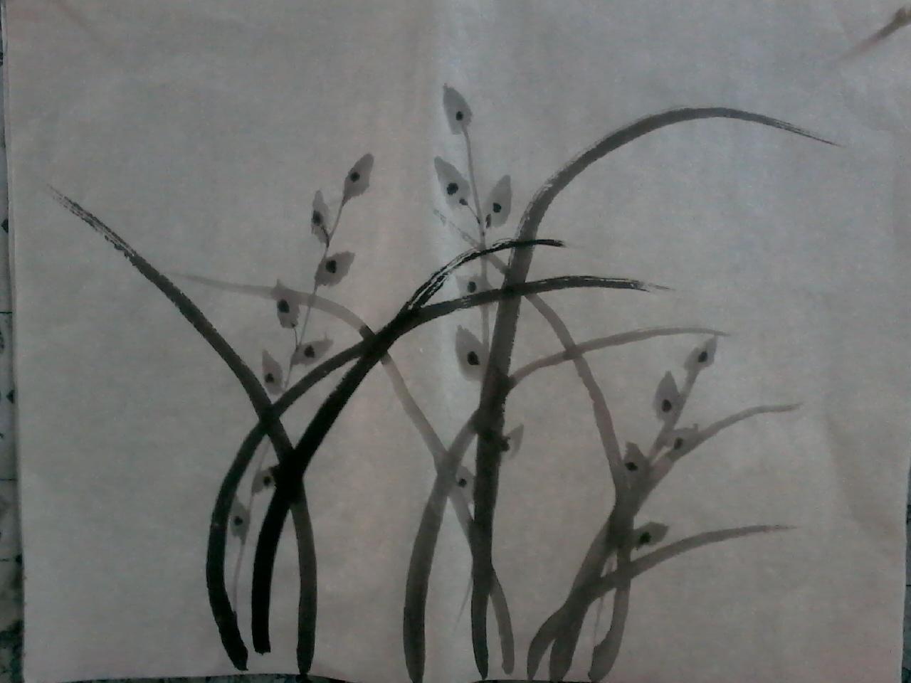 用大笔,浓墨画兰花的叶子,运笔时要有轻重的变化,不要忘记第三笔的&