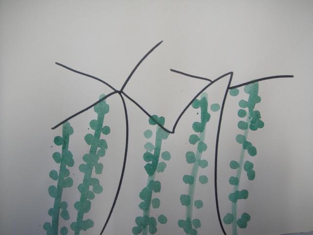 园所主页 班级主页 大二班 幼儿作品  给柳树姐姐梳头