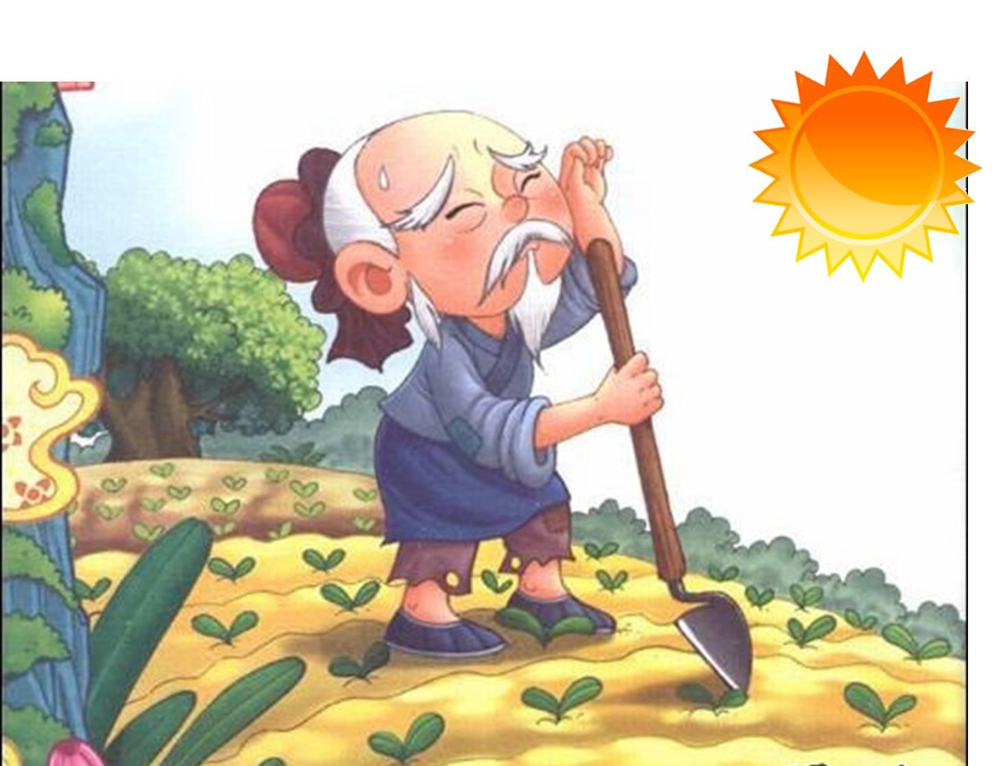 幼儿园中班教案悯农 幼儿园诗歌悯农教案图片