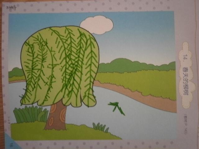 春天的柳树——王怡婷