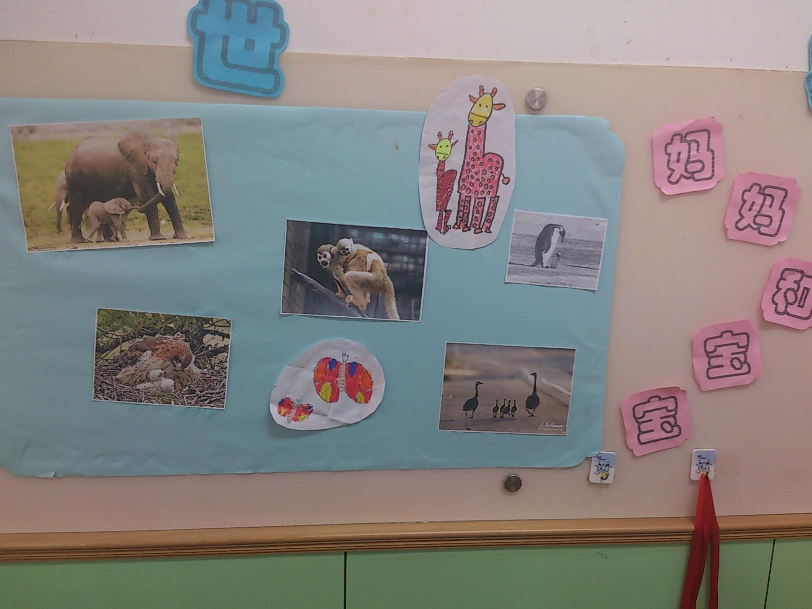 本月我班开展的是动物大世界主题活动,爸爸妈妈快来看看我们的主题墙