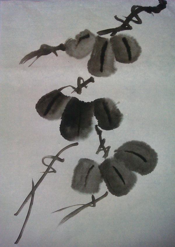 周二,我们学习了画掌状叶,掌状叶在以后画葫芦图片