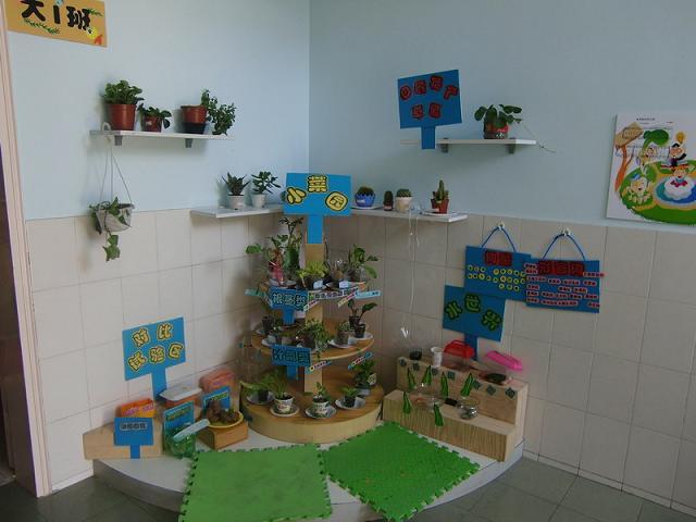 幼儿园大班风景植物绘画
