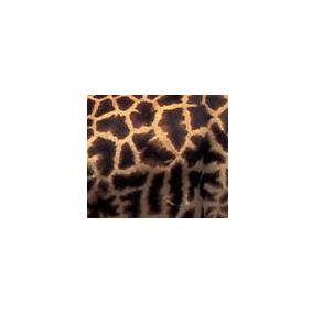 """看向上的一面所黏贴的动物皮毛,猜猜是哪个动物身上的""""花花衣""""."""