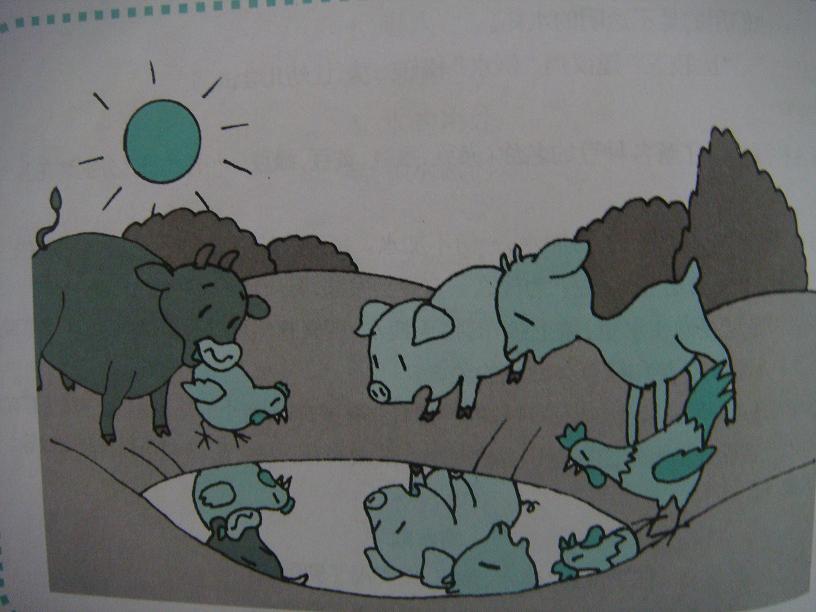 《小土坑》;小动物们看到自己在水塘里的倒影,很惊奇.
