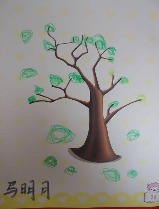 幼儿园中班小树叶图谱