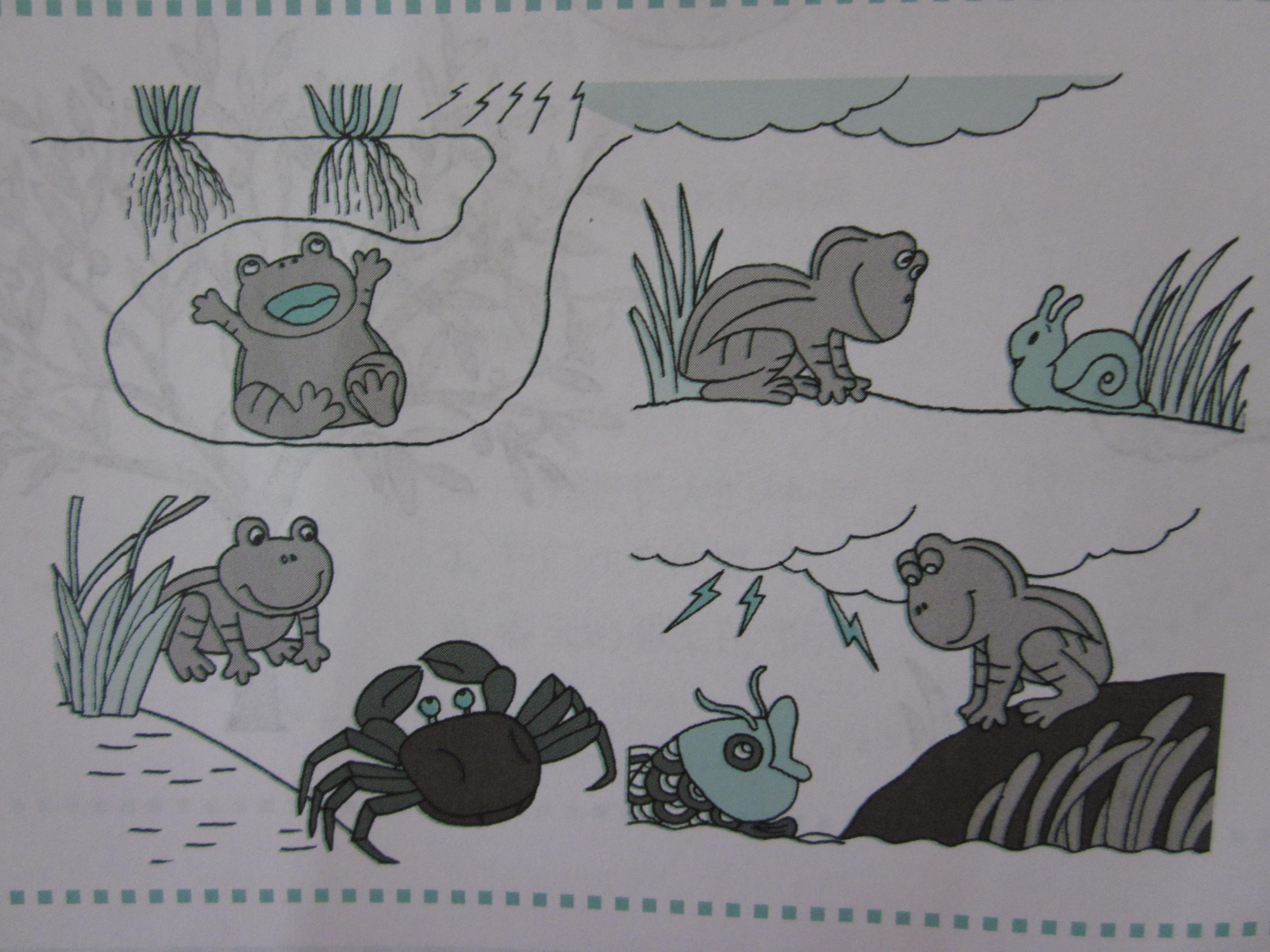 青蛙冬眠图片-信息详细 市光一村幼稚园