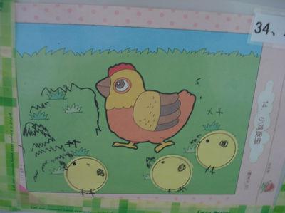 小鸡花园手绘图