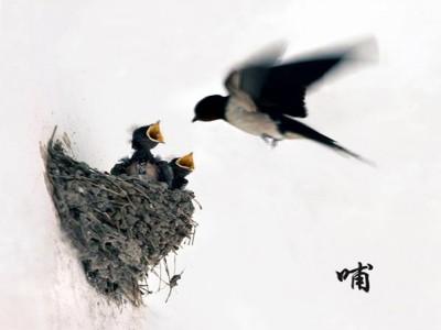 春风轻轻地吹,吹醒了冬眠的小动物,吹来了燕子
