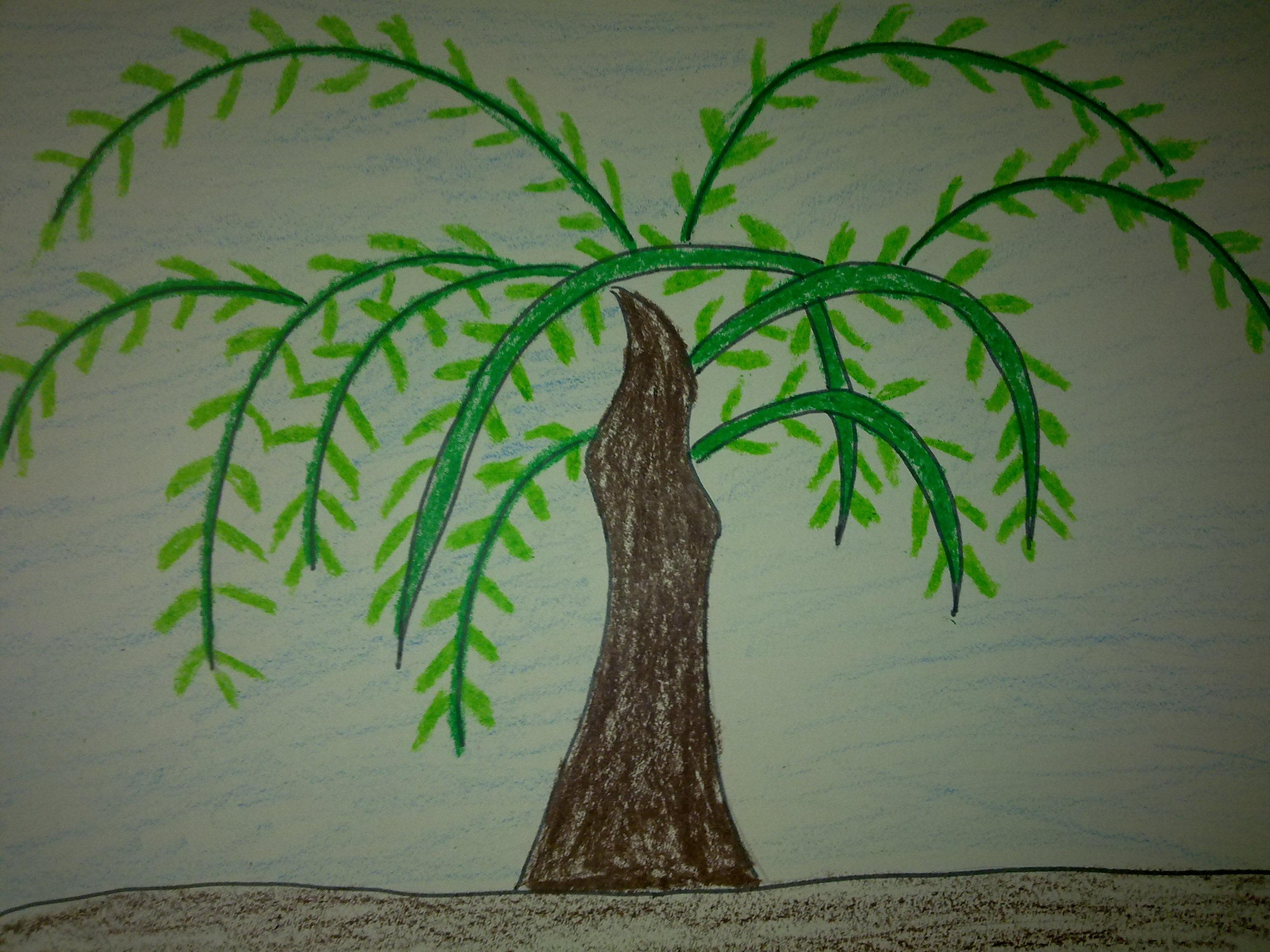 儿童国画教程:柳树的绘画方法   教一年级小朋友画画的教程步骤或者