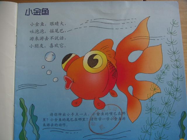 儿歌:小金鱼
