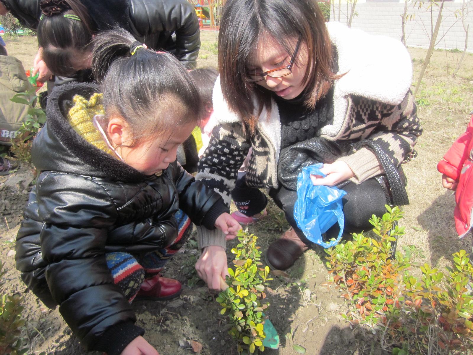 实验幼儿园开展亲子植树活动
