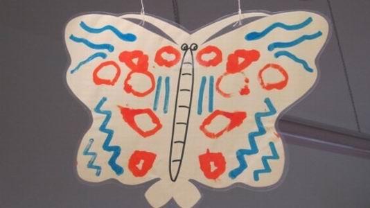 蝴蝶翅膀的花纹,色彩斑斓