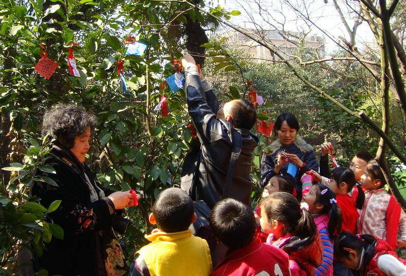 感恩幼儿园,我和小树共成长