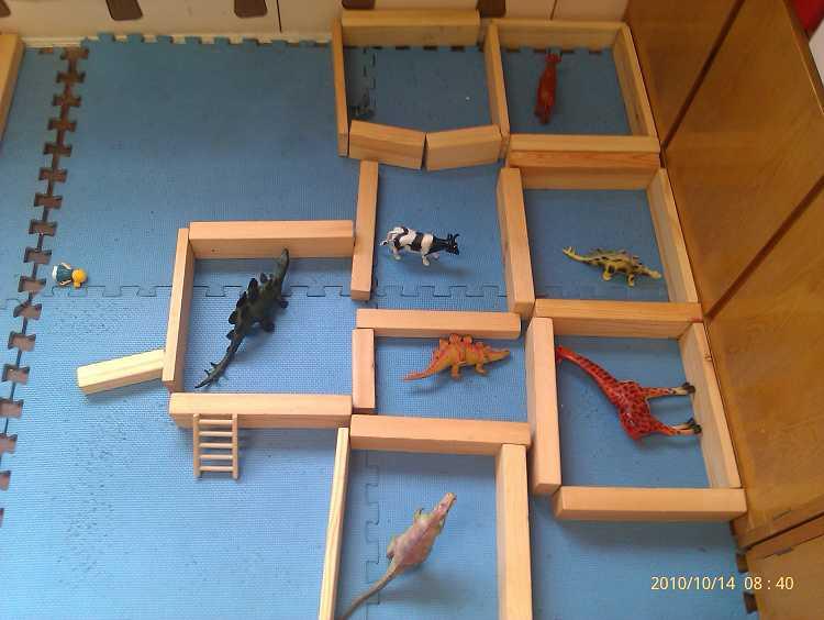 最初的动物园 在老师的帮助下 小朋友们可以用积木围成一