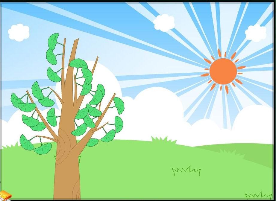 太阳升起来的时候,这片叶子就在地上寻找自己的影子
