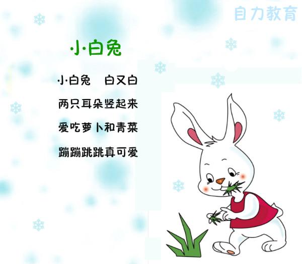 儿歌:小白兔           陆叶 2017年12月25日