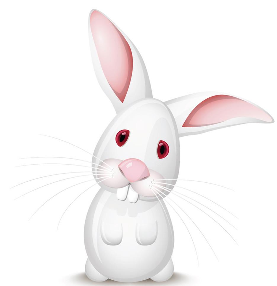 超萌小学生英文作文:小白兔(图); 可爱的小白兔卡通画; 兔子想飞
